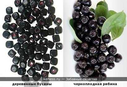 Деревянные бусины и черноплодка