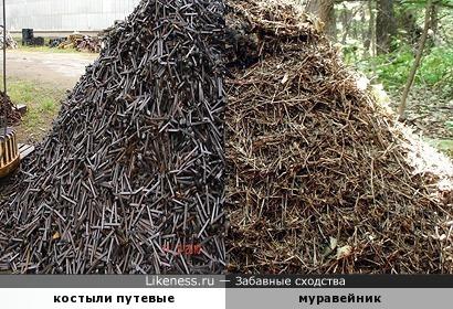 Железный муравейник