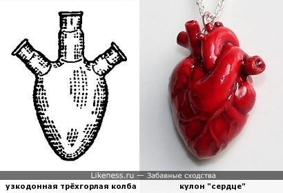 Колба и сердце