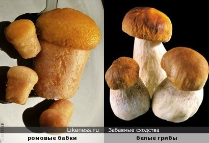 Пошли бабки по грибы