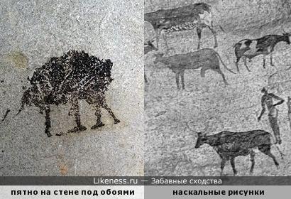 Пятно, обнаруженное под обоями в ходе ремонта, напомнило древние наскальные рисунки