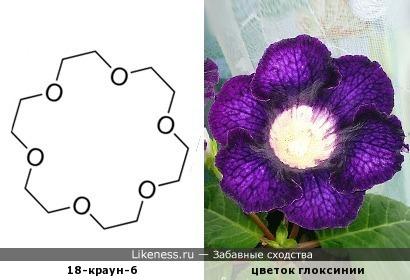 """Ещё один молекулярный """"цветочек"""""""