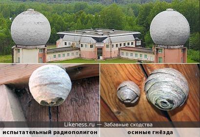 «Радиоульи» в поле безмолвном... Кто же живёт в них? Радиоволны!