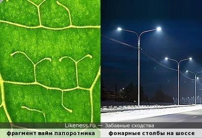 На листочек посмотри – «в парке светят фонари»...