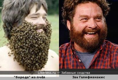 """"""" Отличает мужика борода . Украшает мужика борода."""