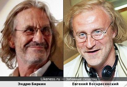 Эндрю Биркин - Евгений Воскресенский