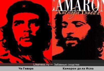 Знаменитое изображение Че и альбом Камарона.