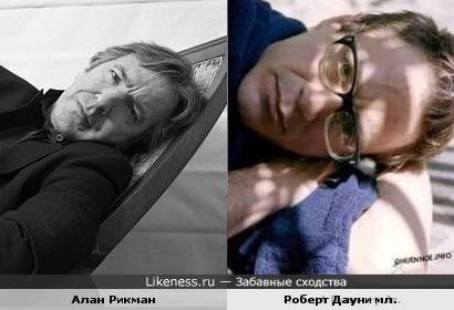 Алан Рикман и Роберт Дауни мл. похожи