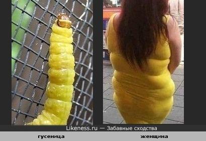 женщина похожа на гусеницу