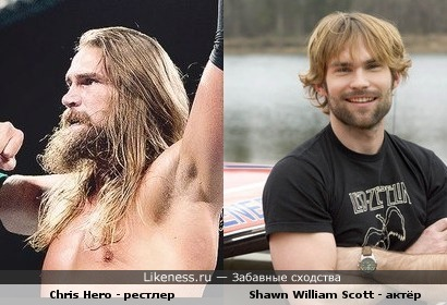 Chris Hero похож на Shawn William Scott