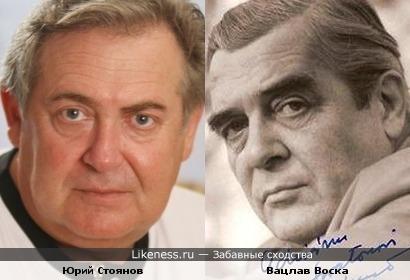 Вацлав Воска напоминает Юрия Стоянова