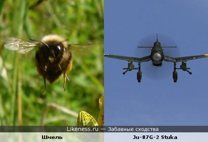 """Шмель напоминает самолёт Ju-87G-2 Stuka (""""Фашистский лапотник"""")"""