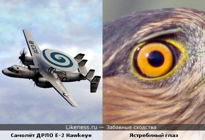 """Лингвистический пост: палубный самолёт ДРЛО E-2 """"Хокай"""" фирмы """"Грумман"""" и ястребиный глаз (англ. Hawk-eye)"""