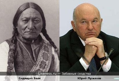 Сидящий Бык напоминает Юрия Лужкова
