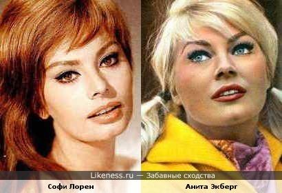 Анита Экберг напоминает Софи Лорен