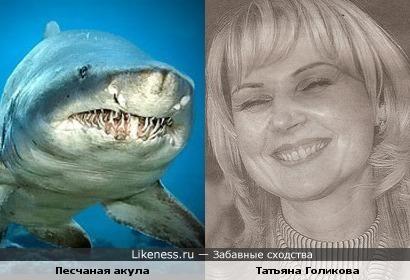 Татьяна Голикова напоминает песчаную акулу