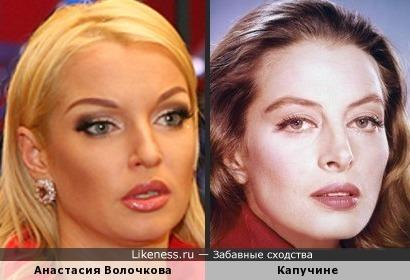 Анастасия Волочкова и Капучине, кажется, похожи