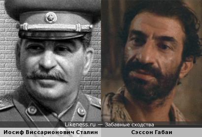 Сэссон Габаи похож на Сталина