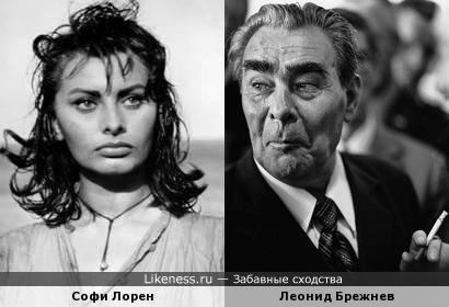 Софи Лорен похожа на Брежнева, как внучка на дедушку