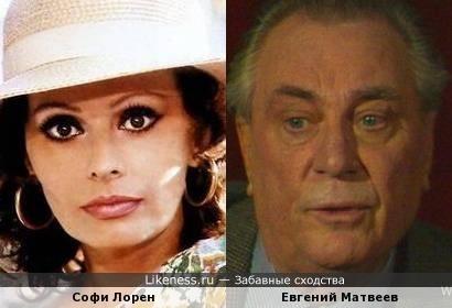 Софи Лорен похожа на Евгения Матвеева, как внучка на дедушку