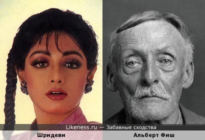 Шридеви похожа на Альберта Фиша, как внучка на дедушку
