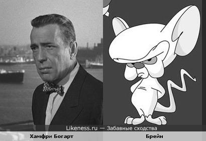 Мышь похожа на Богарта