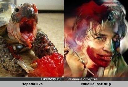 Звезда интернета (Черепашка кушает помидорку) и вампир (мой вариант - Илья Лагутенко)