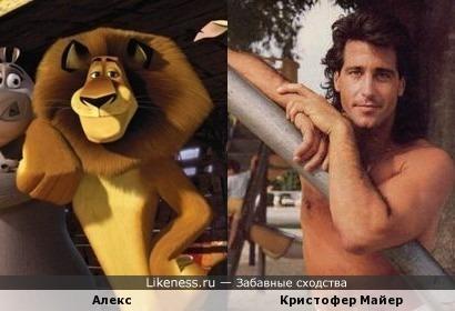 Кристофер Майер на этом фото напомнил льва Алекса (уж не знаю почему :))