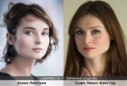 Елена Липская похожа на Софи Эллис-Бекстор