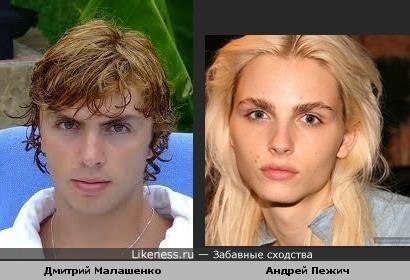 Дмитрий Малашенко похож на Андрея Пежича
