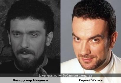 Вальдемар Матушка похож на Сергея Жилина