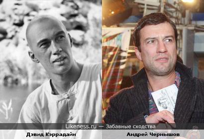 Дэвид Кэррадайн похож на Андрея Чернышова
