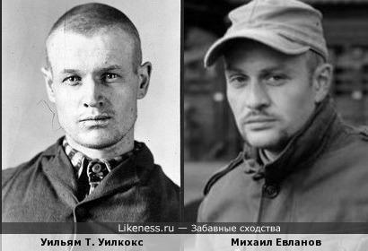 Уильям Т. Уилкокс (Филлипс) напомнил Михаила Евланова