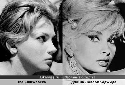 Эва Кшижевска и Джина Лоллобриджида