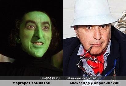 Маргарет Хэмилтон и Александр Добровинский