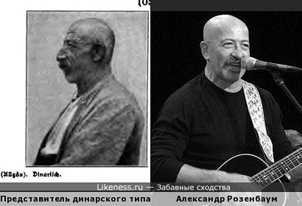 Представитель динарского типа и Александр Розенбаум