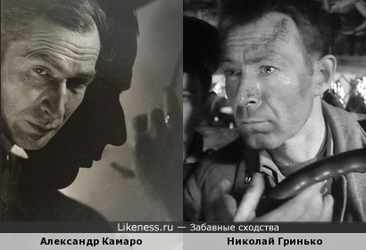Александр Камаро и Николай Гринько