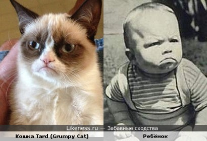 Ребёнок похож на Grumpy Cat