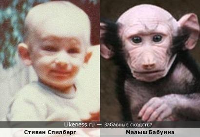 Стивен Спилберг и малыш бабуина