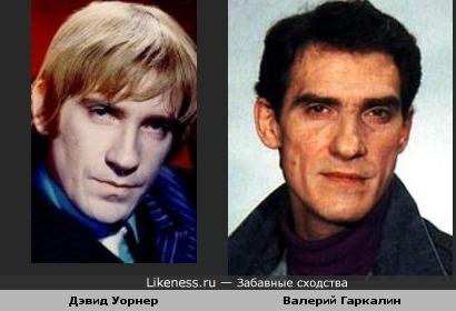 Дэвид Уорнер и Валерий Гаркалин похожи