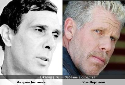 Андрей Болтнев и Рой Перлман похожи в общих чертах.