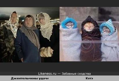 Зима, холода....