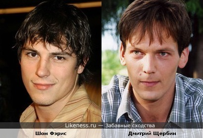 Шон Фэрис и Дмитрий Щербин похожи.