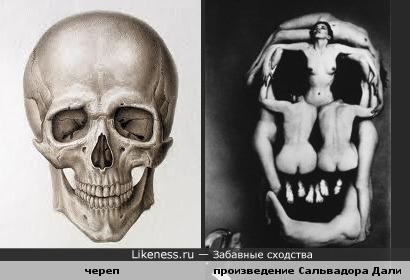 Что общего между женским телом и черепом? Дали!