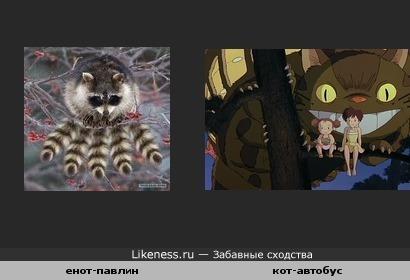 Инетовская фото-шутка напомнила другого персонажа с большим к-вом конечностей.