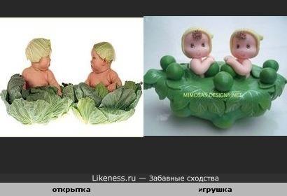 Дети капусты.