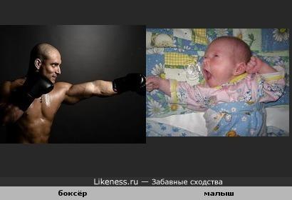 Боксёр против грудного ребёнка.