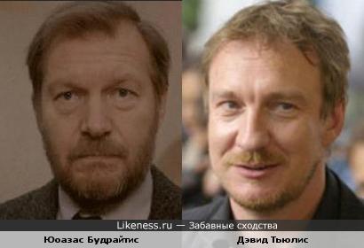 Будрайтис и Тьюлис похожи.