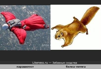 Спортсмен похож на животное.