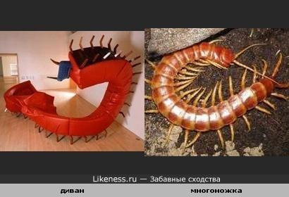 Странная мебель, похожая на насекомое